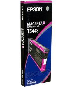 Epson T5443 MagentaUltraChrome Ink Cartridge
